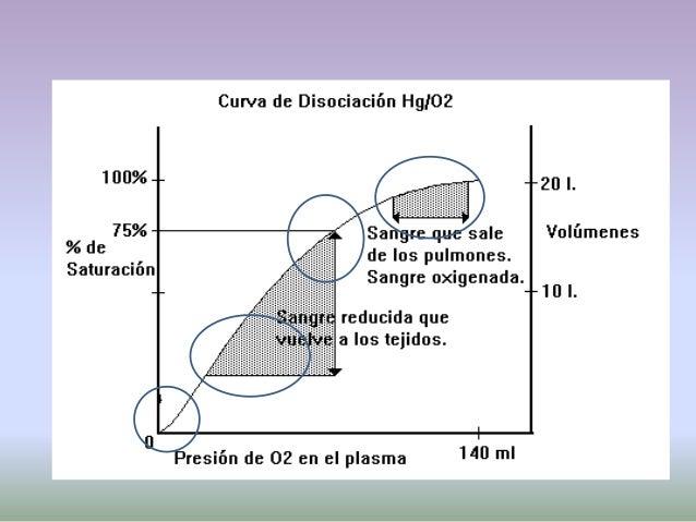 • Déficit de oxígeno.•INSUFICIENCIA RESPIRATORIA:• Ocurre cuando la presión parcial de O2 arterial caede 50 mm Hg o la pre...