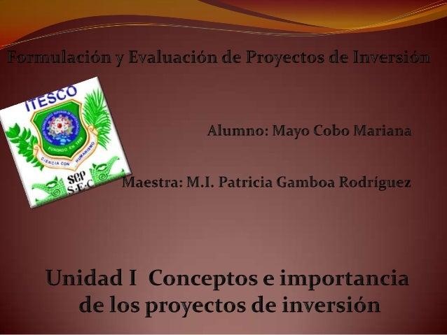 1.1 Importancia, Definición y Origen de los proyectos Actualmente tenemos diversa cantidad de productos en el marcado pero...