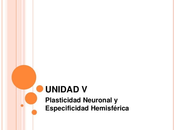 UNIDAD V<br />Plasticidad Neuronal y Especificidad Hemisférica<br />