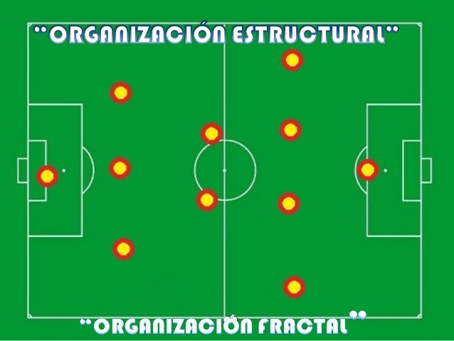 ORGANIZACIÓN ESTRUCTURAL 1-4-3-3Juego de posiciones, líneas transversales y longitudinales