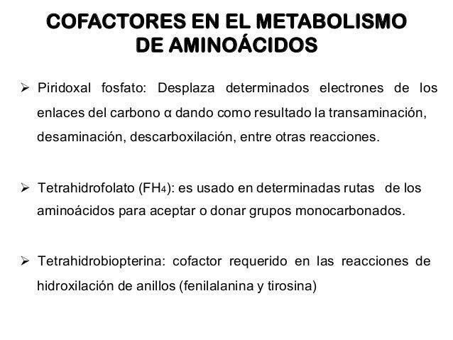 Información fascinante que le apuesta por ninguna manera sabía sobre metabolismo insulina