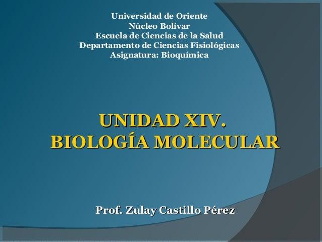 Universidad de Oriente             Núcleo Bolívar     Escuela de Ciencias de la Salud  Departamento de Ciencias Fisiológic...