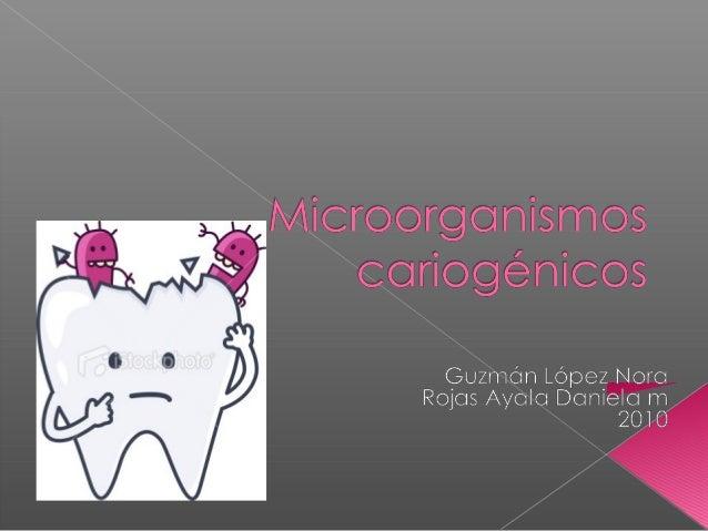 """ Morfológico  Epidemiología  Sociología  """"Enfermedad infecciosa crónica transmisible , que causa la destrucción locali..."""
