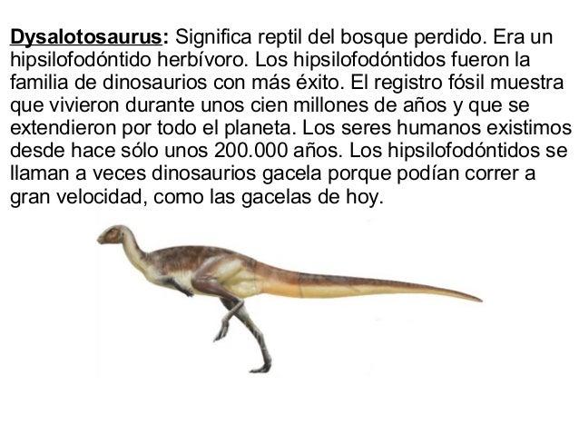 Dinosaurios Bosque de los dinosaurios, villa elisa. dinosaurios