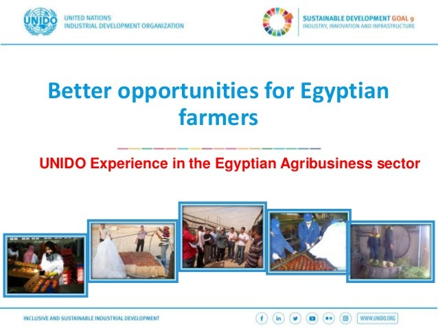 Better opportunities for Egyptian farmers UNIDO Experience in the Egyptian Agribusiness sector