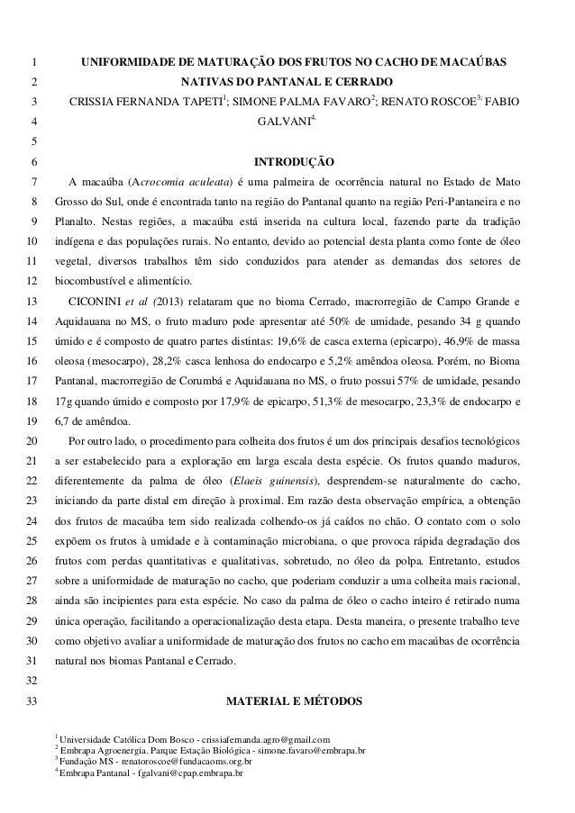 UNIFORMIDADE DE MATURAÇÃO DOS FRUTOS NO CACHO DE MACAÚBAS 1 NATIVAS DO PANTANAL E CERRADO 2  CRISSIA FERNANDA TAPETI1; SIM...