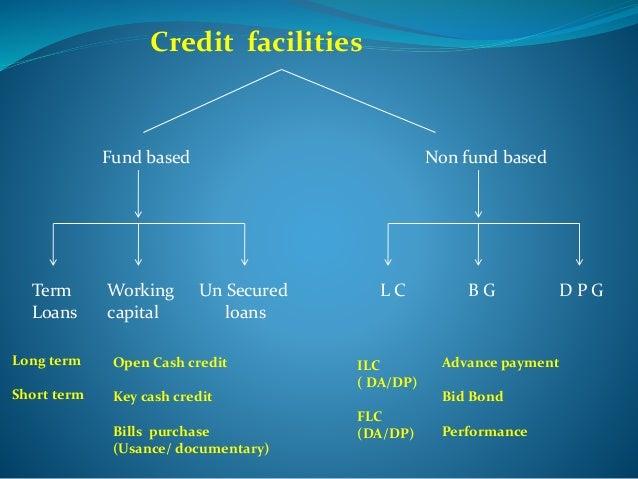 Huskhawk group payday loan photo 4
