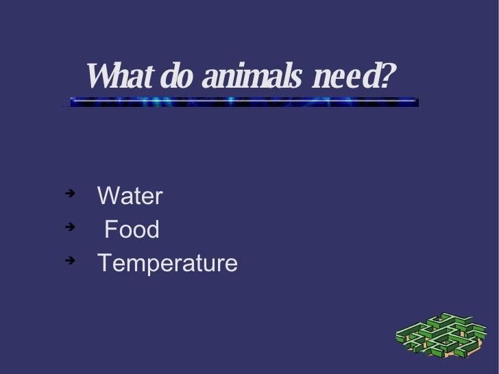 What do animals need? <ul><ul><li>Water </li></ul></ul><ul><ul><li>Food </li></ul></ul><ul><ul><li>Temperature </li></ul><...
