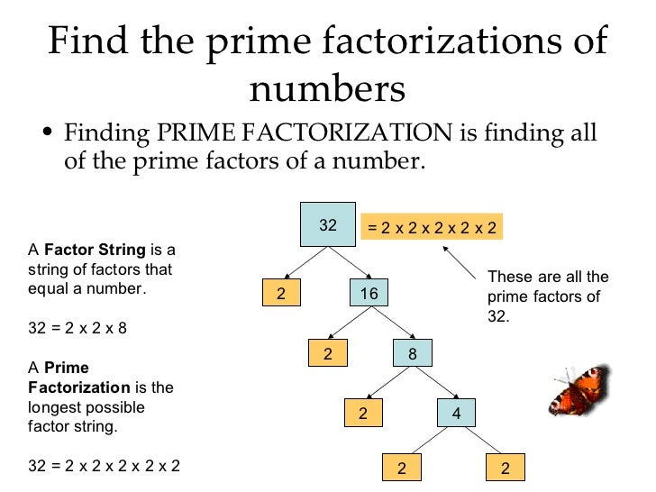 Prime factorization of 16 and 20 dating 2