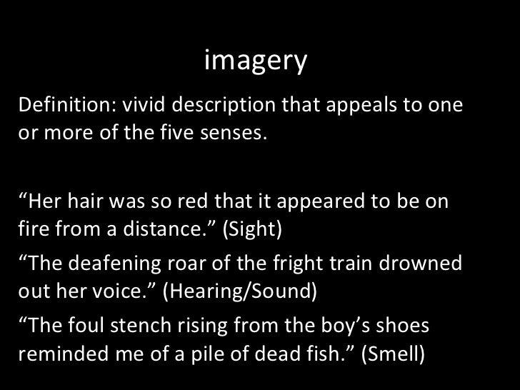 vivid description definition