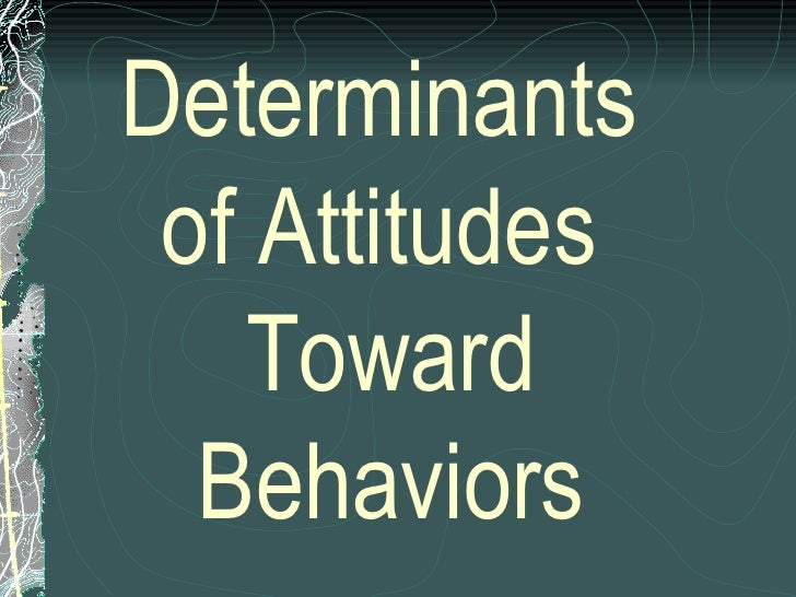 determinants of peoples attitudes towards immigration Individual attitudes toward immigration, focusing on the determinants of  twenties on the other hand, sex does not seem to affect people's attitude toward the.