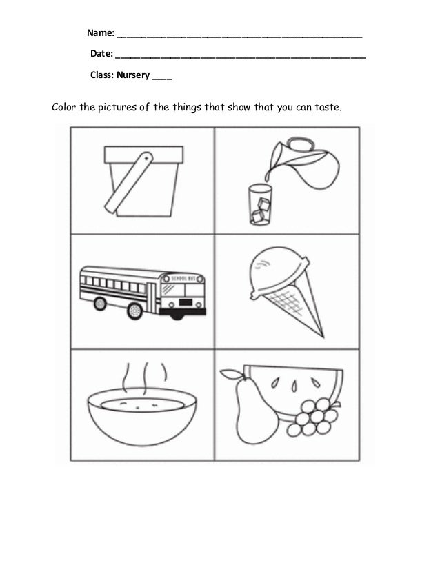 five sense worksheet: NEW 440 FIVE SENSES WRITING WORKSHEET