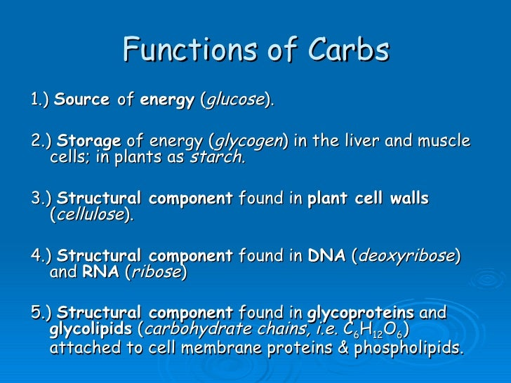 functions of carbohydrates – citybeauty, Human body