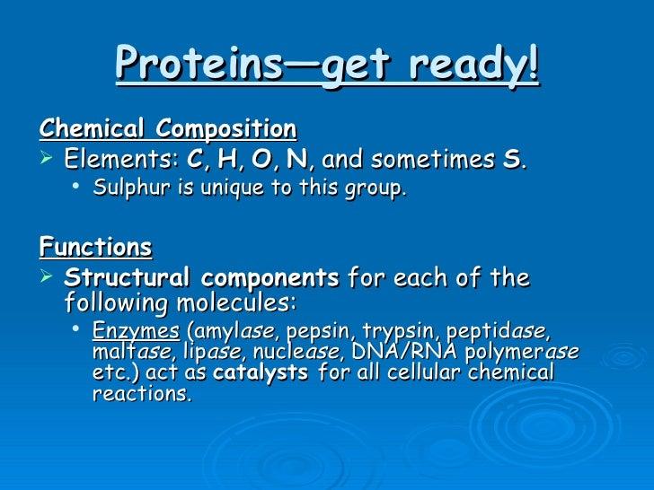 Proteins—get ready! <ul><li>Chemical Composition </li></ul><ul><li>Elements:  C ,  H ,  O ,  N , and sometimes  S . </li><...