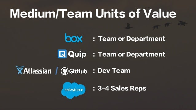 Medium/Team Units of Value : Team or Department : Team or Department : Dev Team : 3-4 Sales Reps /