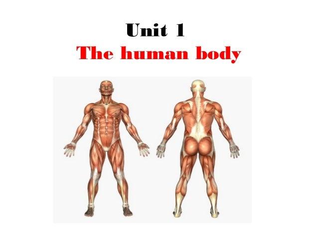 Unit 1 The human body