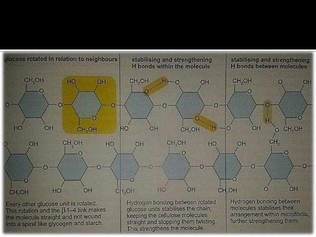 Useful links cape biology impact factor