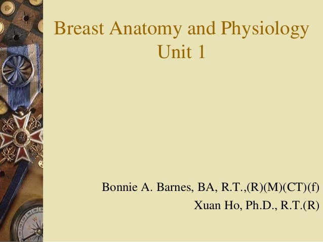 breast anatomy and physiology