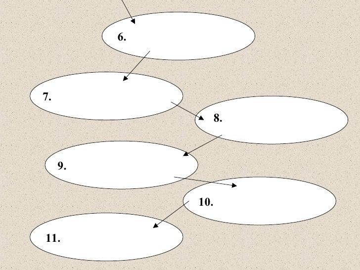 unit 5 lab 1 Unit 5 part 1 mad mad mad neuron lab  unit 6 endocrine system wtks unit 6 endocrine system diagram unit 6 endocrine system hormone worksheet unit.