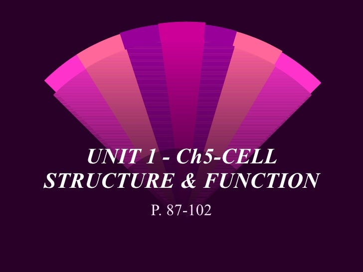 UNIT 1 - Ch5-CELL STRUCTURE & FUNCTION P. 87-102