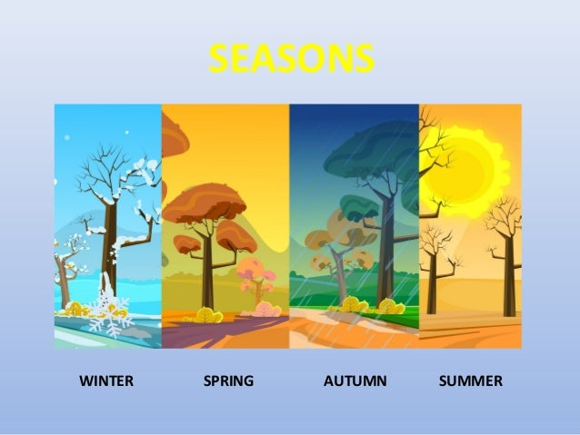seasons days of the week months of the year