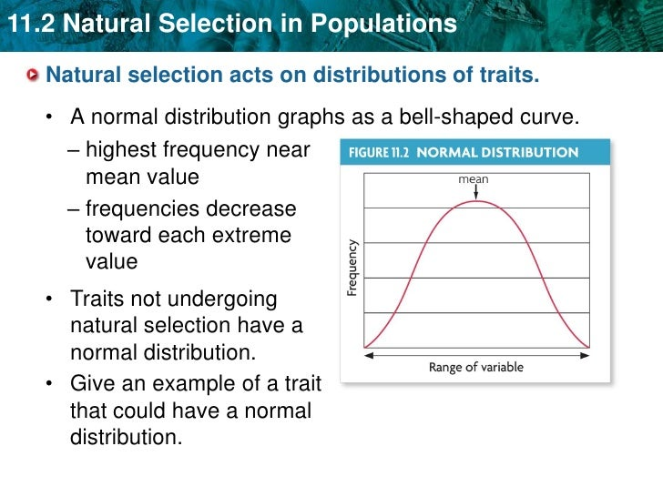 Why Is Mutation Random And Natural Selection Not