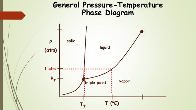 Chem 2 pressuretemperature phase diagrams iii equilibrium 8 general pressure temperature phase diagram vapor liquid solid pt triple point ccuart Image collections