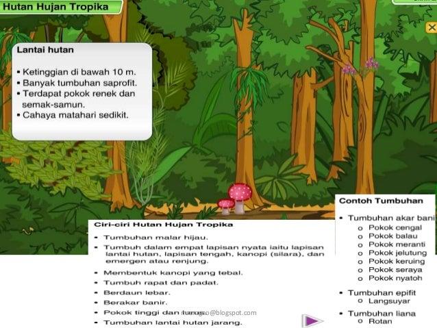 Geo Ting 1 Jenis Dan Taburan Tumbuhan Di Malaysia