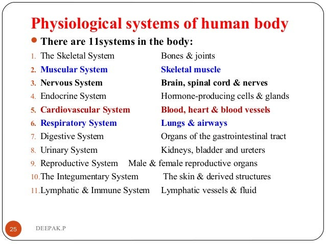 Physiological systems of human body There are 11systems in the body: 1. The Skeletal System Bones & joints 2. Muscular Sy...