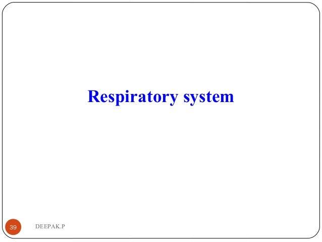 DEEPAK.P39 Respiratory system