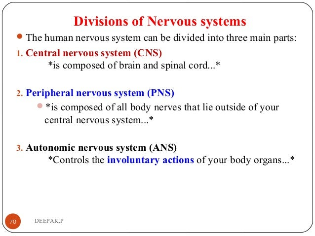 Divisions of Nervous systems The human nervous system can be divided into three main parts: 1. Central nervous system (CN...