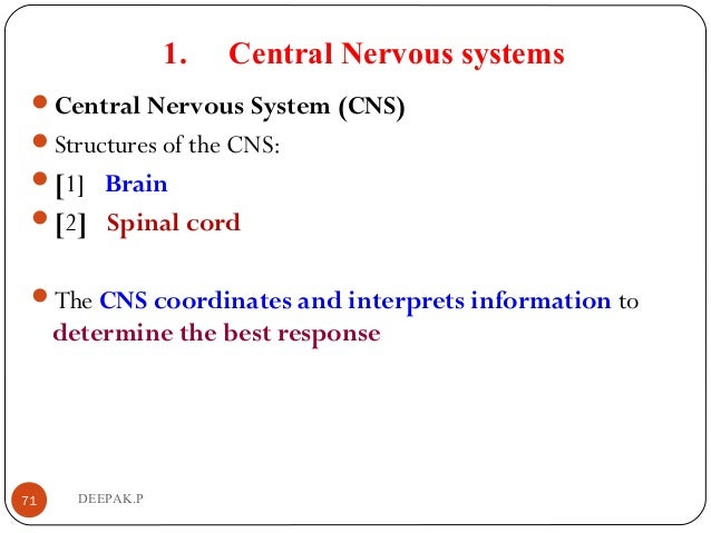 1. Central Nervous systems Central Nervous System (CNS) Structures of the CNS: [1] Brain [2] Spinal cord The CNS co...