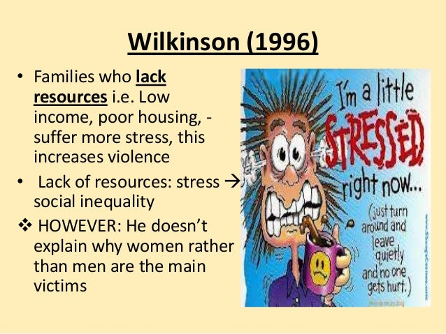 Wilkinson (1996) • Families who lack resources i.e. Low income, poor housing, suffer more stress, this increases violence ...