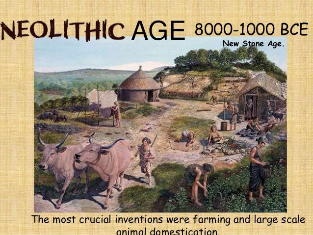 a history of humans in paleolithic and the neolithic age and its revolution Neolithic (new stone age) revolution the neolithic or new stone age was a time of great development for early humans during the neolithic age, humans went from depending on hunting and gathering to being able to farm their own crops and breed and herd animals for their own use.