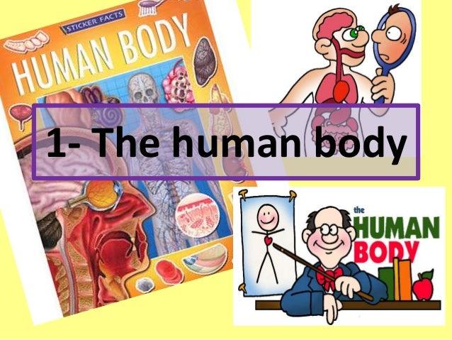 1- The human body