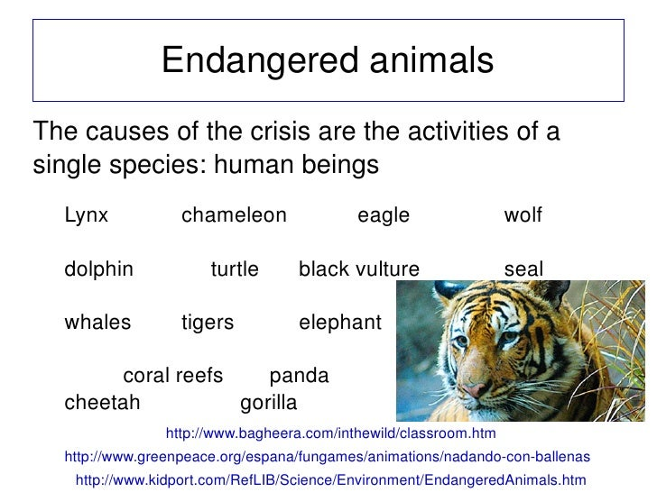 endangered species and how they impact They were forced to invasive species impact nearly half of the species currently listed as threatened or endangered under the us federal endangered species.