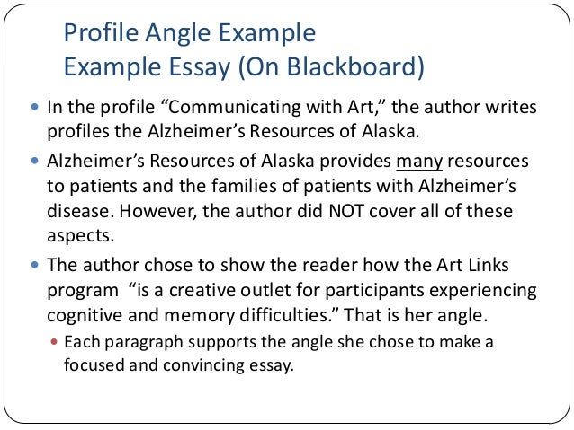 16 profile angle example example essay - The Example Of Essay