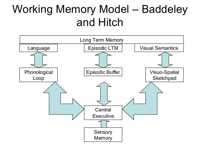 the definition and types of memories Pc magazine tech encyclopedia index - definitions on common technical and computer related terms.