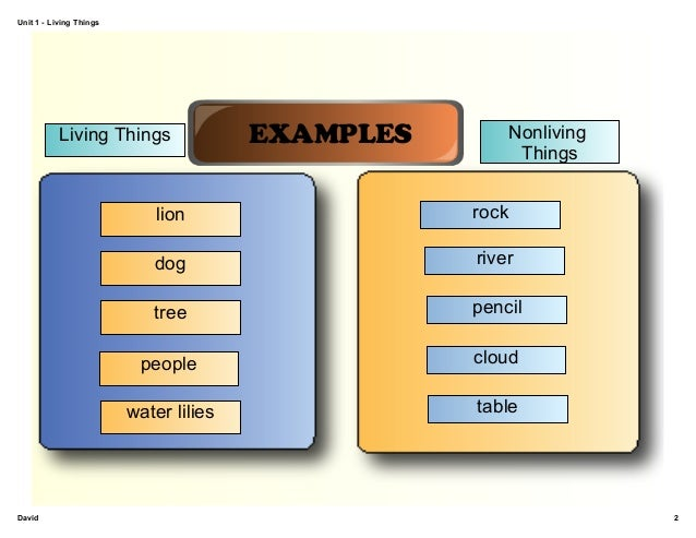 Living and non living things diagram diy wiring diagrams unit 1 review living things rh slideshare net venn diagram of living and nonliving things living ccuart Choice Image
