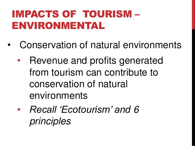 The Positive and Negative Impacts of Ecotourism on African Wildlife