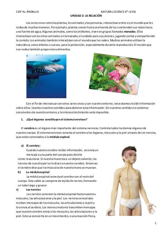 CEIP AL-ÁNDALUS NATURALSCIENCE 6th LEVEL 1 UNIDAD 2: LA RELACIÓN Los seresvivos comolasplantas,los animalesylaspersonas, i...