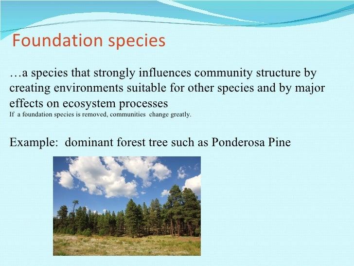 Unit2 Ecology Ic Communities