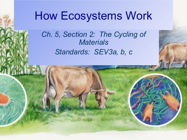 How Ecosystems Work Ch. 5, Section 2: The Cycling of Materials Standards: SEV3a, b, c