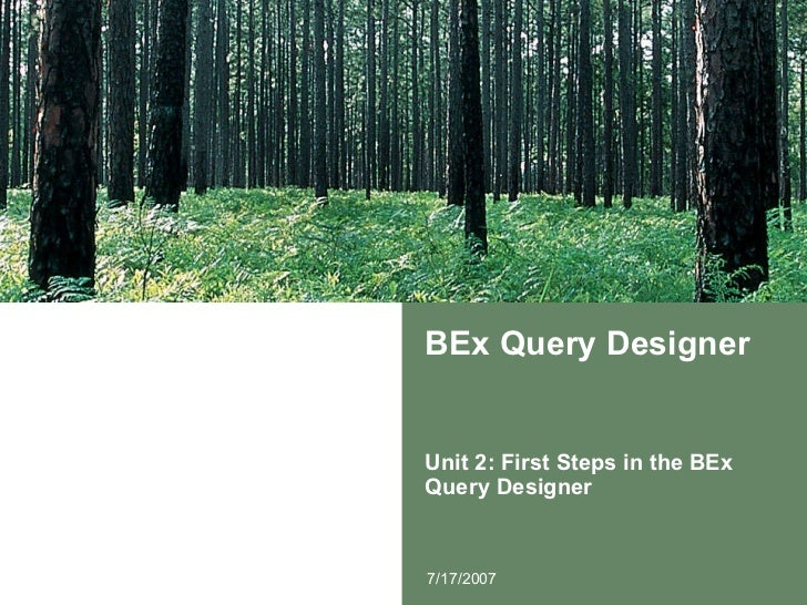 BEx Query Designer Unit 2: First Steps in the BEx Query Designer 7/17/2007