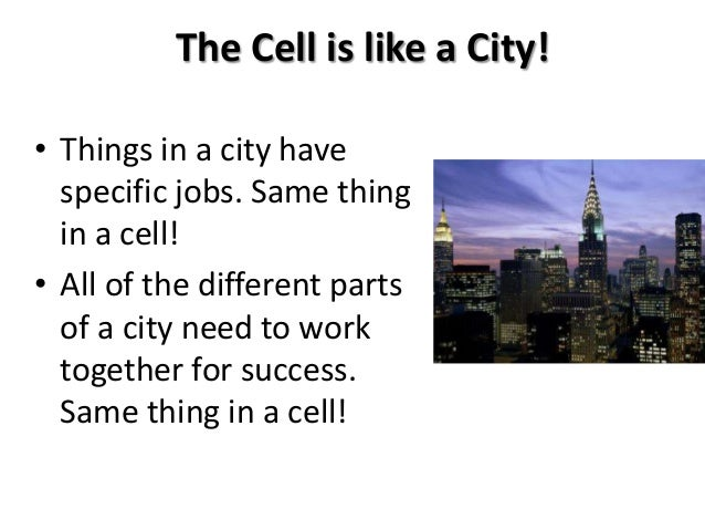 cell unit notes Cell organelles - notes cell theory cells are the basic unit of life the cell theory states that: 1) all organisms are made up of one or more cells and the products of those cells 2) all cells carry out life activities ( require energy, grow, have a limited size.