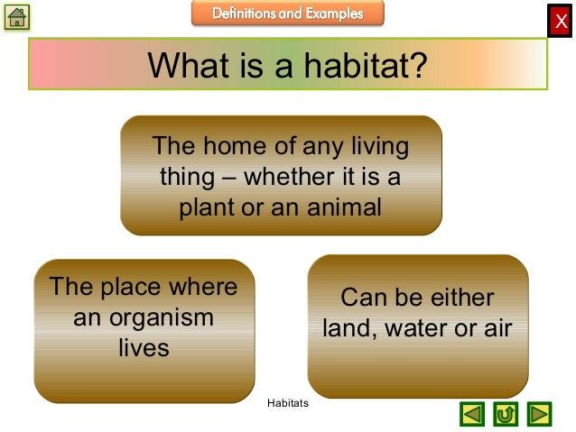 Biology M1 Ecology Habitats
