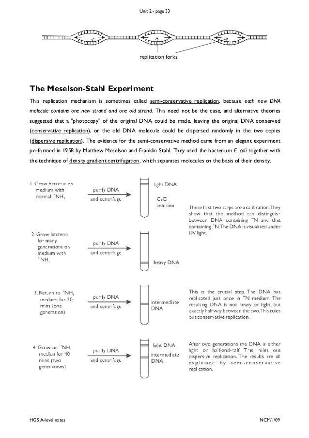meselson stahl experiment erklärung