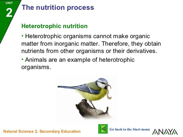 Unit 2 nutrition