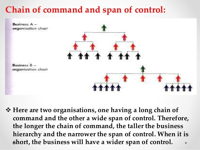 Distinguish between span of control and chain of command