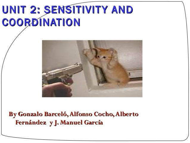 UNIT 2: SENSITIVIT Y AND COORDINATION  By Gonzalo Barceló, Alfonso Cocho, Alberto Fernández y J. Manuel García